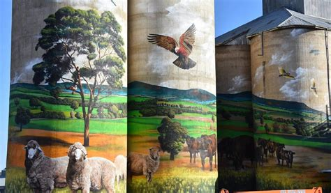 Molong's massive silo mural plans split community views