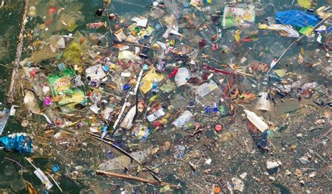 » The Great Pacific Garbage Patch is Huge! Can We Clean It Up?