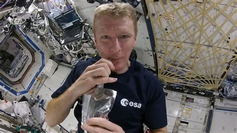 Tim Peake: How and when to watch ESA astronaut's return