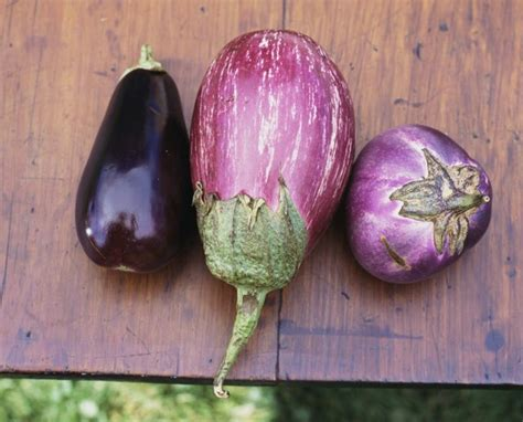 List of Nightshade Vegetables & Fruits   LIVESTRONG