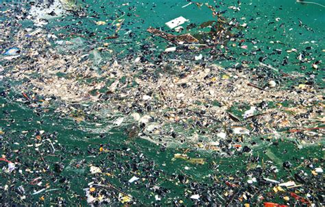 Great Pacific Garbage Patch Expanding Daily – The Matador