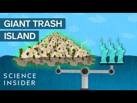 The Great Pacific Garbage Patch: Taking Out the Trash